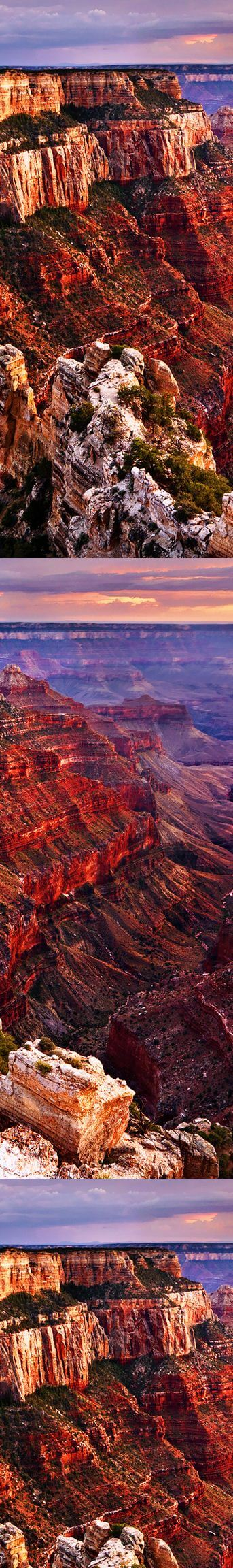 arizona-luxury-expeditions-reviews