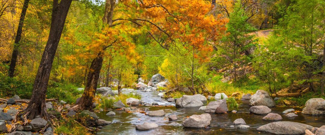 Oak Creek Canyon, AZ